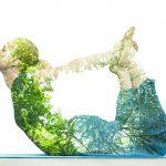 ob_61a356_yoga-nature-fusion