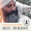 Challenge 40 jours · Zéro négativité