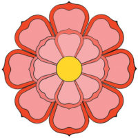 lotus_rose.jpg
