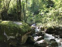 ruisseau.jpg